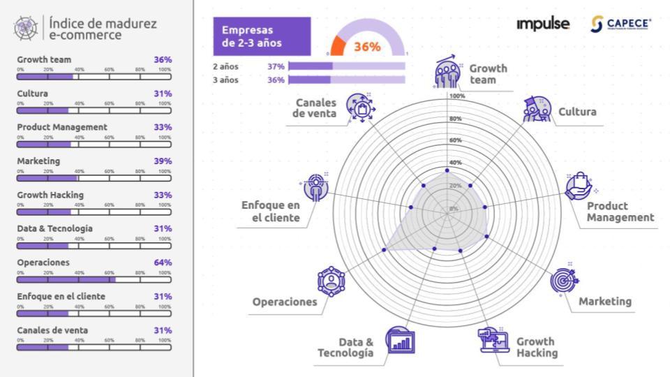grafico con los resultados del nivel de madurez de empresas de ecommerce de 2 a 3 años